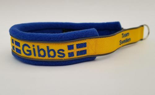 Gibbs.Team Sweden