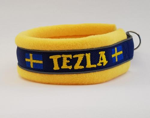 Tezla