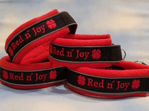 red n` joy  Agilitylag
